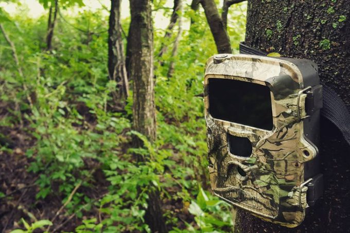 Laser aiming trail cam