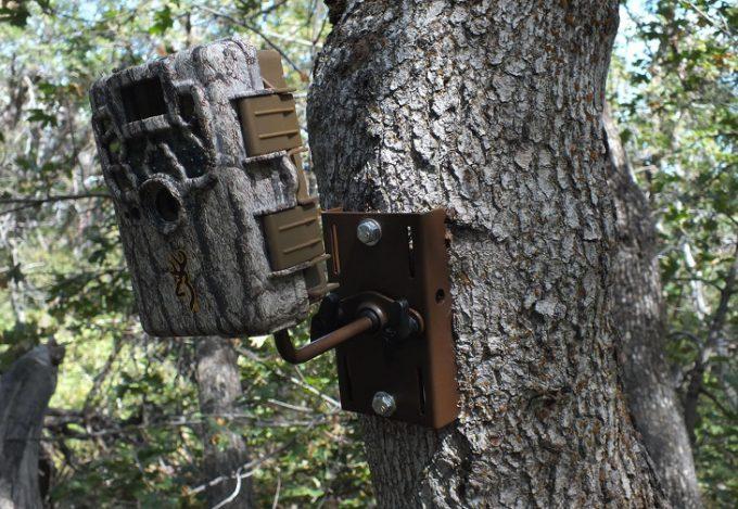 Tilted setup of trail camera