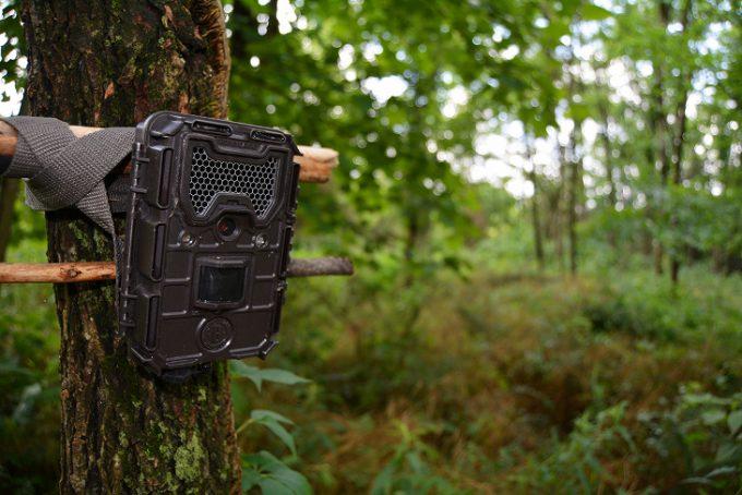 Trail cam downward angle setup