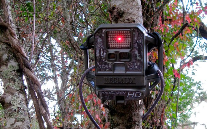 Trail cam with hd camera