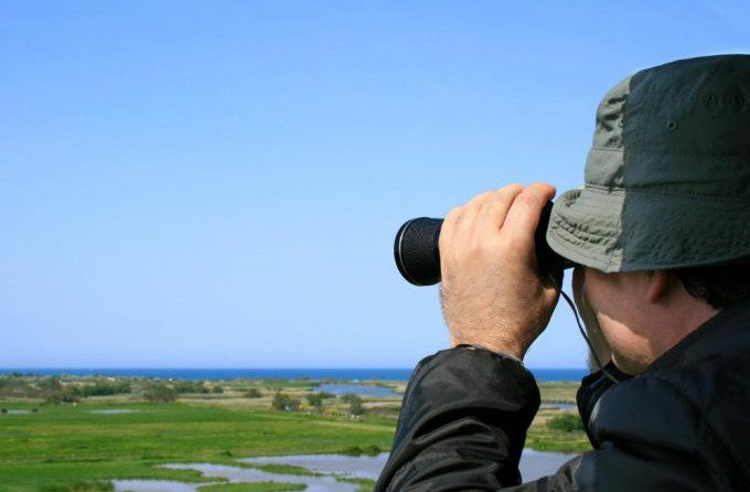 Bird-watcher uses binoculars