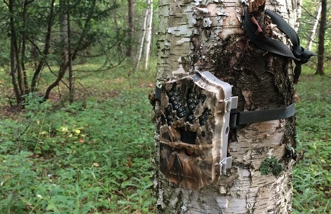Outfitter trail camera