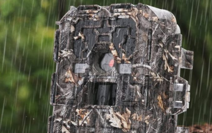 Best Trail Camera: The Hunter's Best Friend for Scouting the Wilderness