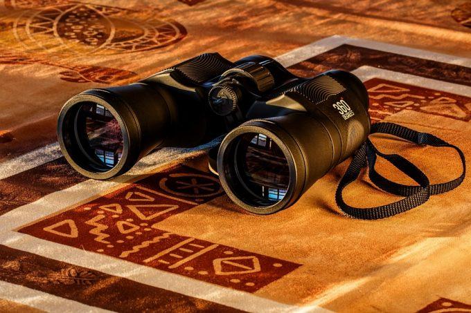 Spy Glass Dawn Binoculars Spy Spying Birdwatching