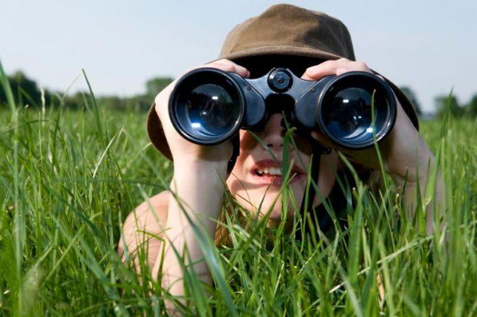 Through binocular lens