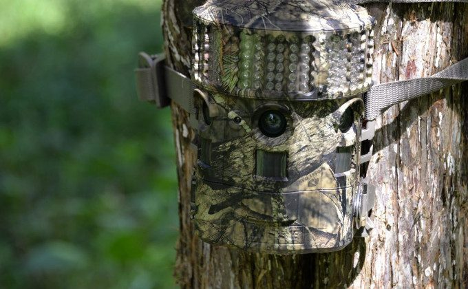 Trail cam for hunting