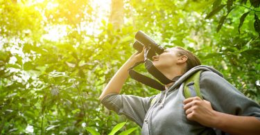 Binoculars for bird-watching