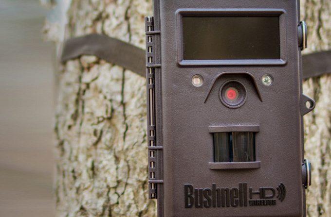 Bushnell cellular trail cam closeup