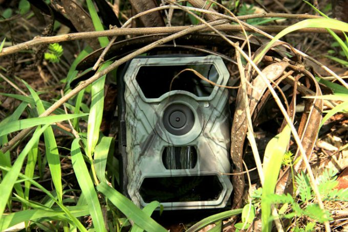 Camouflaging a wireless trail cam
