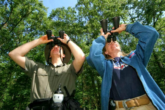 Couple goes birding