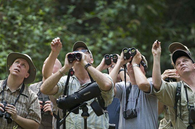 First birding experience