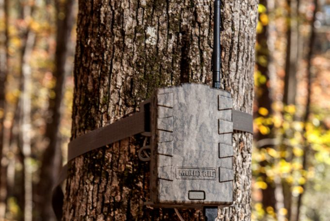 New cell trail cams