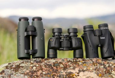 Set of birding binoculars