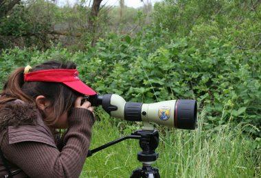Peeking through telescope