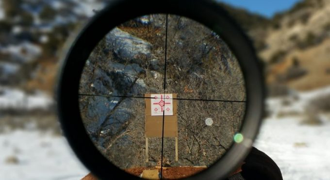 view from Leupold VX-1 3x9x40 lenght