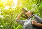 Binoculars for bird-watching