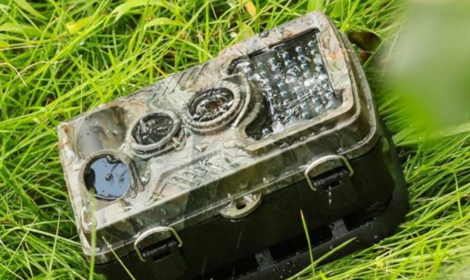 Best Cellular Trail Camera: Bringing Cameras Into the Next Level