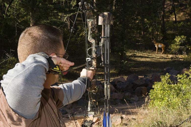 aiming at animal with bow