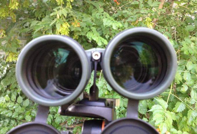 Vortex Binocular Optics